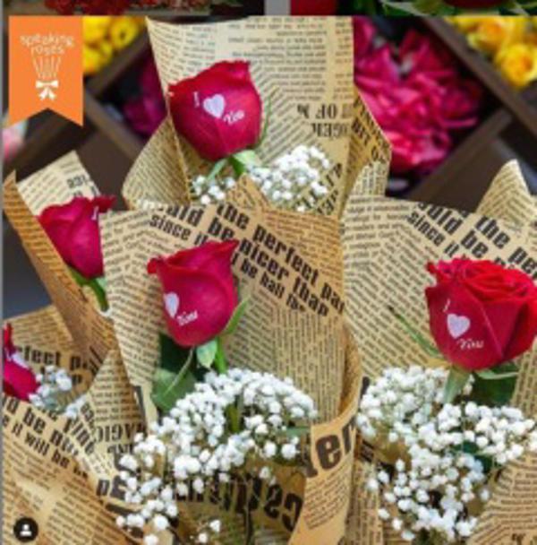 Franquicia Speaking Roses