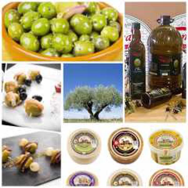 Franquicia Campo Real Gourmet
