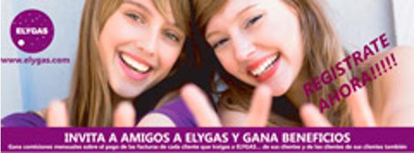 Franquicia Elygas