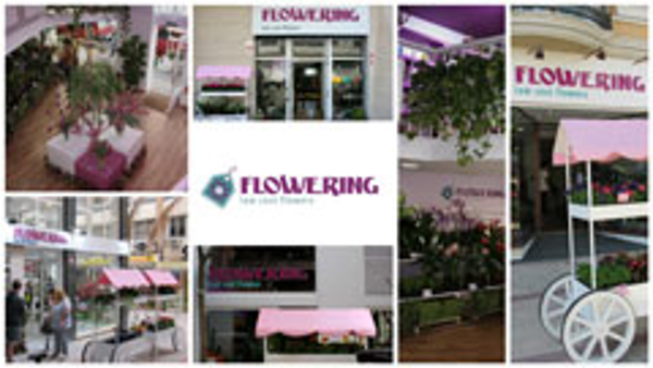 Franquicia Flowering