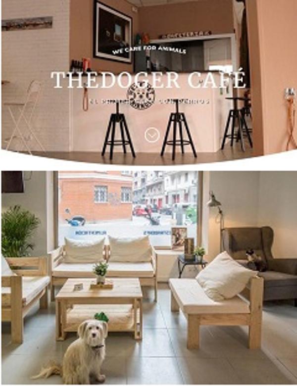 Franquicia The Doger Café