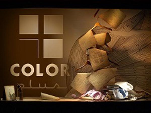 La franquicia Color Plus ha triplicado su equipo humano desde su inicio en 2008