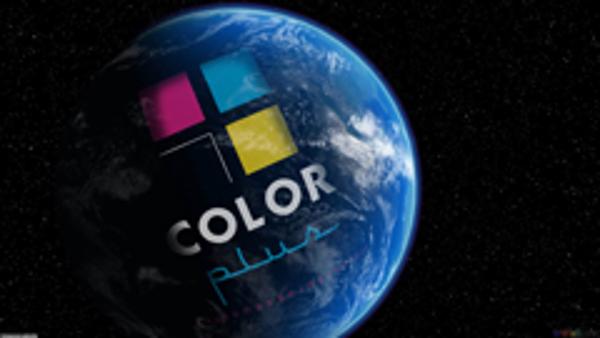Los franquiciados de Color Plus opinan